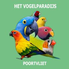 Het Vogelparadijs Logo